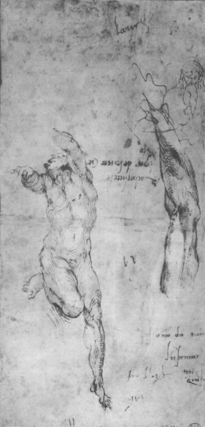 Michelangelo - Male nude; arm; bearded man