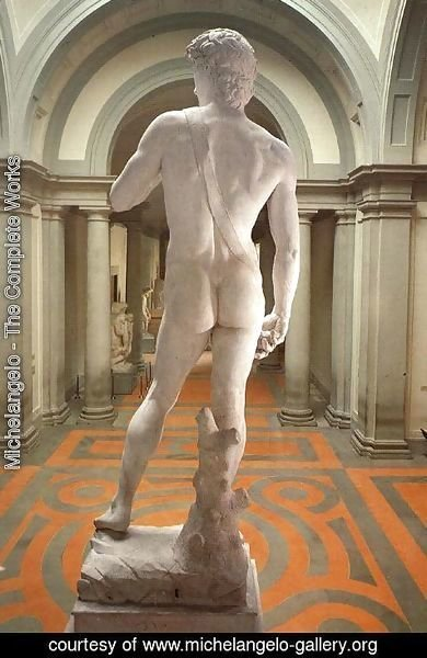 Michelangelo - David [detail: rear view]