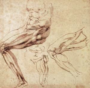 Michelangelo - Three Studies of a Leg
