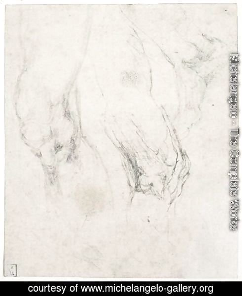 Michelangelo - Study Of A Left Thigh And Knee, With A Separate Study Of A Right Knee Seen In Profile, And A Right Foot