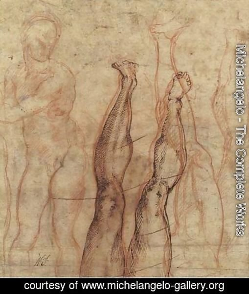Michelangelo - Studies of a leg and foot sketched the other way up