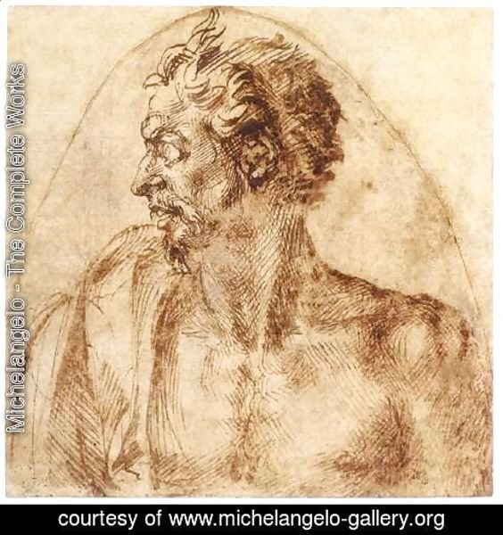 Michelangelo - Head of a Satyr