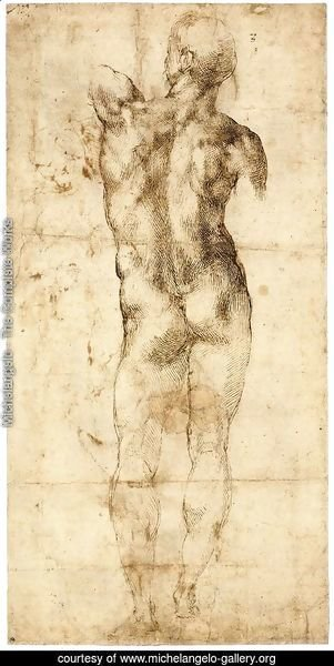 Standing Male Nude, Seen from the Rear (recto)