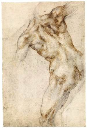 Michelangelo - Male Nude, Seen from the Rear (recto)