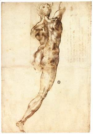 Michelangelo - Male Nude, Seen from the Rear