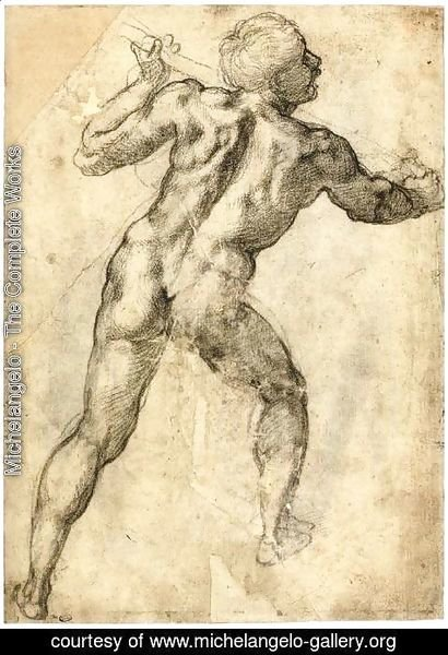 Michelangelo - Male Nude, Seen from the Rear (recto) 3