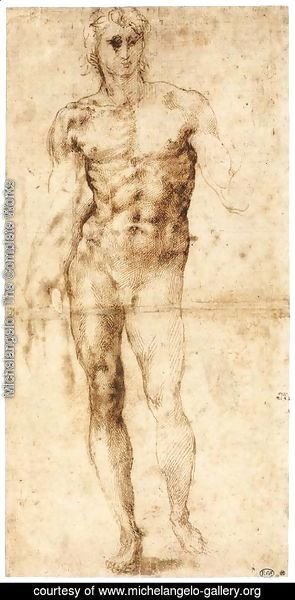 Michelangelo - Male Nude (recto)