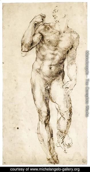 Michelangelo - Male Nude (recto) 2