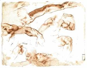 Michelangelo - Various Studies of Figures and Limbs (verso)