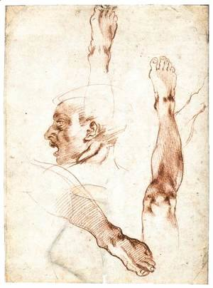 Michelangelo - Male Head in Profile and Leg Studies (recto)
