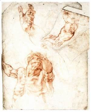 Michelangelo - Five Studies for the Figure of Haman (recto)
