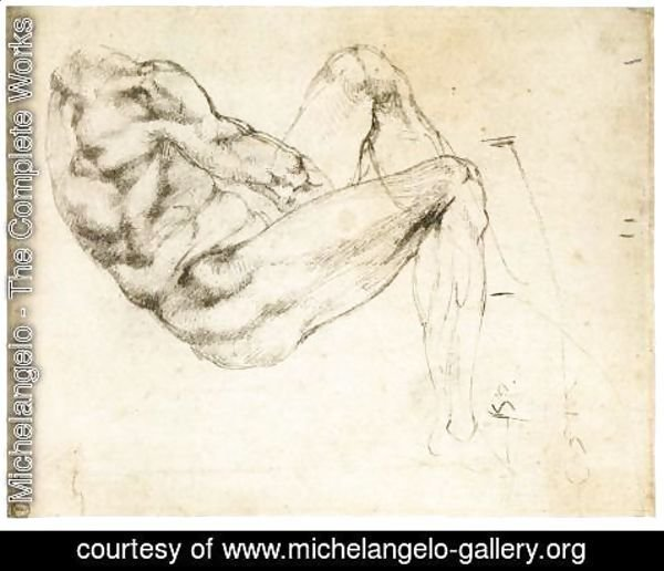 Michelangelo - Male Torso (recto)