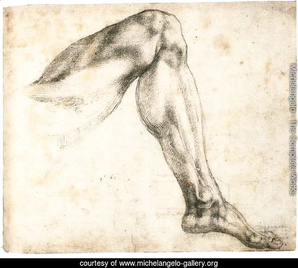 Study of a Left Leg (recto)