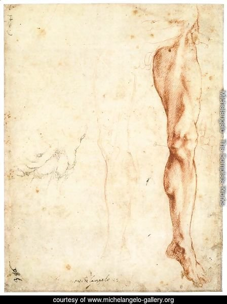 Study of a Left Male Leg (verso)