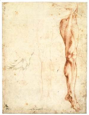Michelangelo - Study of a Left Male Leg (verso)