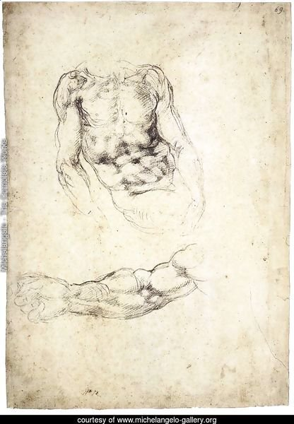 Upper Body of a Sitting Man and Study of a Right Arm (recto)