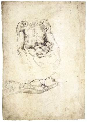 Michelangelo - Upper Body of a Sitting Man and Study of a Right Arm (recto)