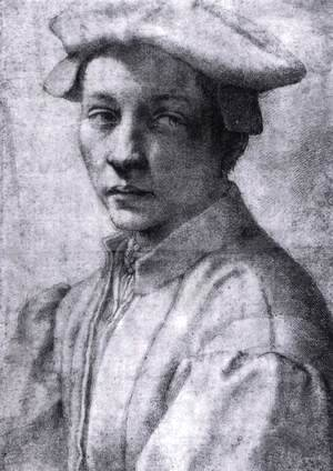 Michelangelo - Andrea Quaratesi