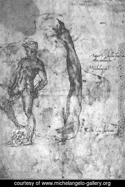 Michelangelo - Study For An Arm Of The Marble David And The Figure Of The Bronze David