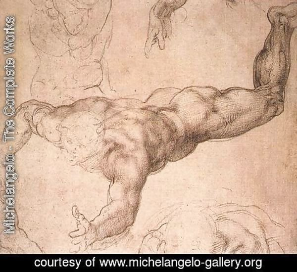 Michelangelo - Male Figure 1530s