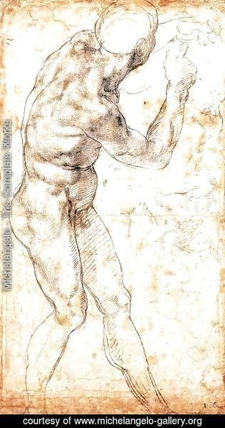 Michelangelo - Male Nude 1504-06