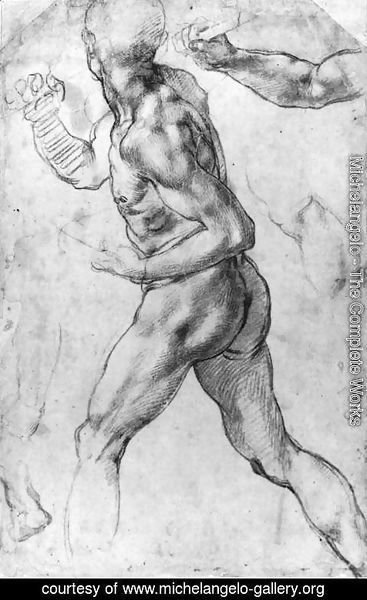 Michelangelo - Male Nude 1505