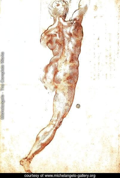 Study for a Nude 1504