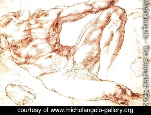 Michelangelo - Study for Adam c. 1510