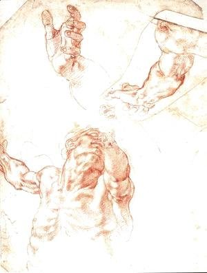 Michelangelo - Study for Haman 1511