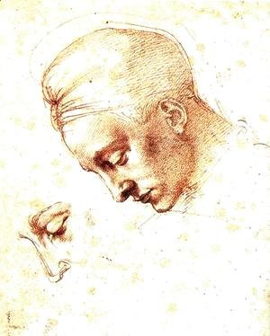 Michelangelo - Study of a Head c. 1530