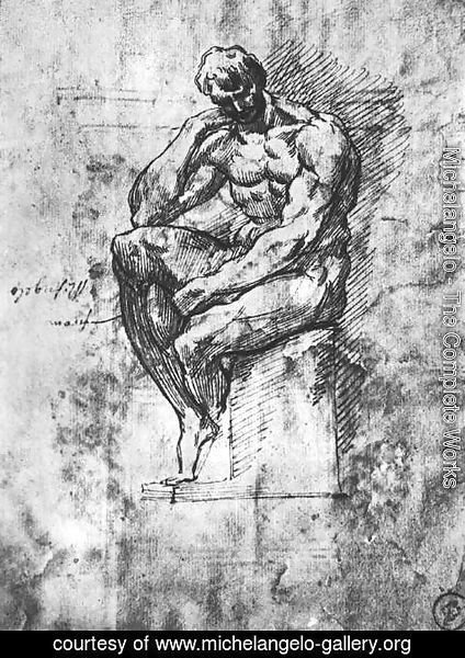 Michelangelo - Study of a Man 1510-11